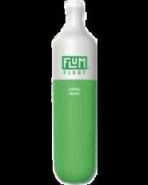 FLUM Cool Mint Disposable Device