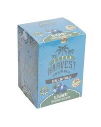 Green Harvest Real Leaf Rolls - Mini - Blueberry (20 Pack Display)
